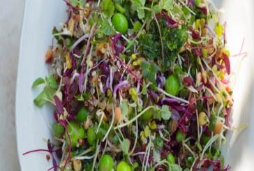 الكينوا وفوائدها الكثيرة على صحة الأنسان في كل الأطباق المتنوعة