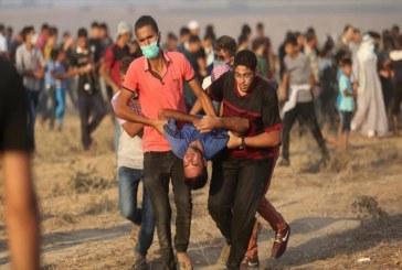 الجيش الإسرائيلي يصيب 52 فلسطينيا بالرصاص الحي قرب حدود غزة