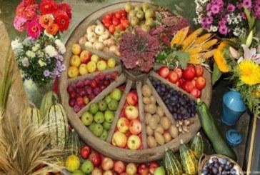 خطوان بسيطة وسهلة للأكل الصحيح لضمان صحة جيدة